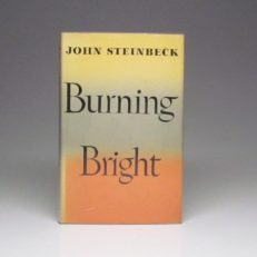 Burning Bright by John Steinbeck.